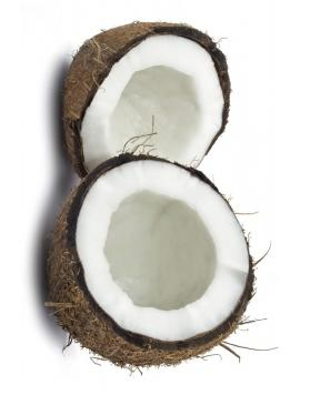 light coconut