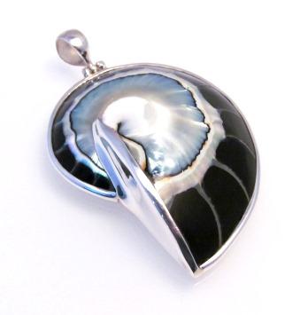 Black Nautilus Shell Pendant