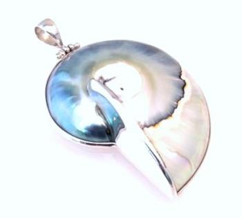 Blue Nautilus Shell Pendant - Large
