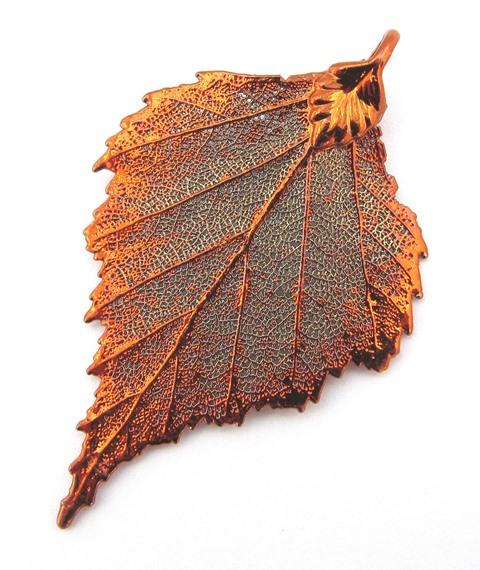 Copper Birch - Medium