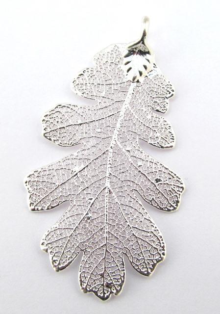 Silver Oak - Medium