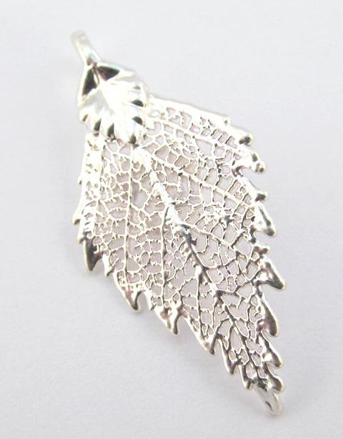Silver Birch - Small