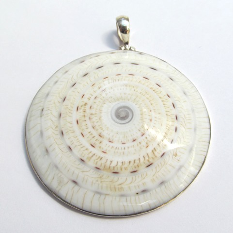 White and Brown Shell Pendant