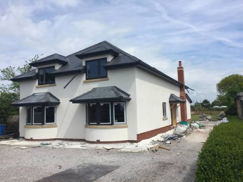 K rend plant placd