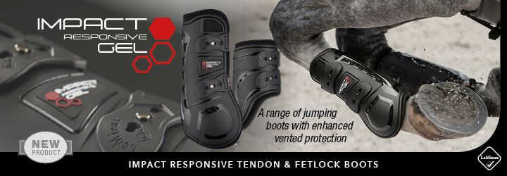 LeMieux Tendon Boots