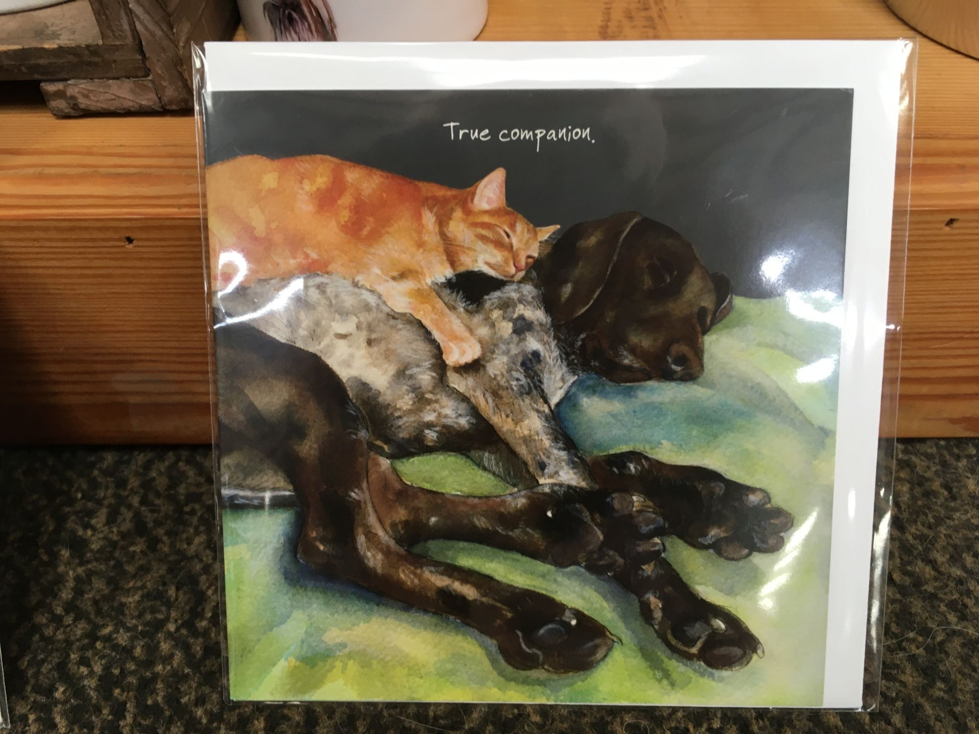 Pointer and Cat card