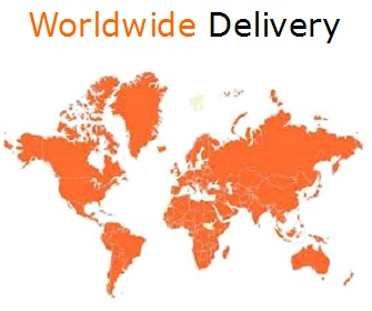 worldwide delivery map 2