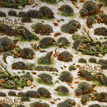 100% Cotton - Hedgehogs - per half metre