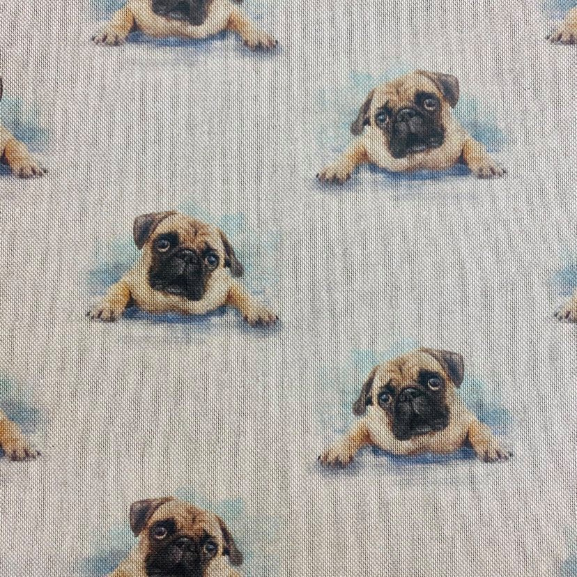 80% cotton/20% polyester Pug - per half meter
