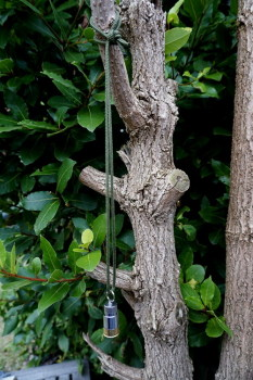 Accesories-dangle lite hanging from a branch by beaver Bushcraft