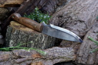 cutting shark knife with rare englsih wallnut handle for beaver bushcraft