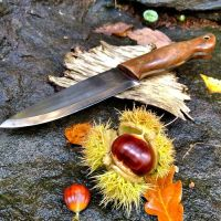 Andy Turner Shark Knife for beaver bushcraft website