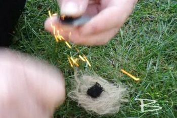 Fire jute nest in use by beaver bushcraft