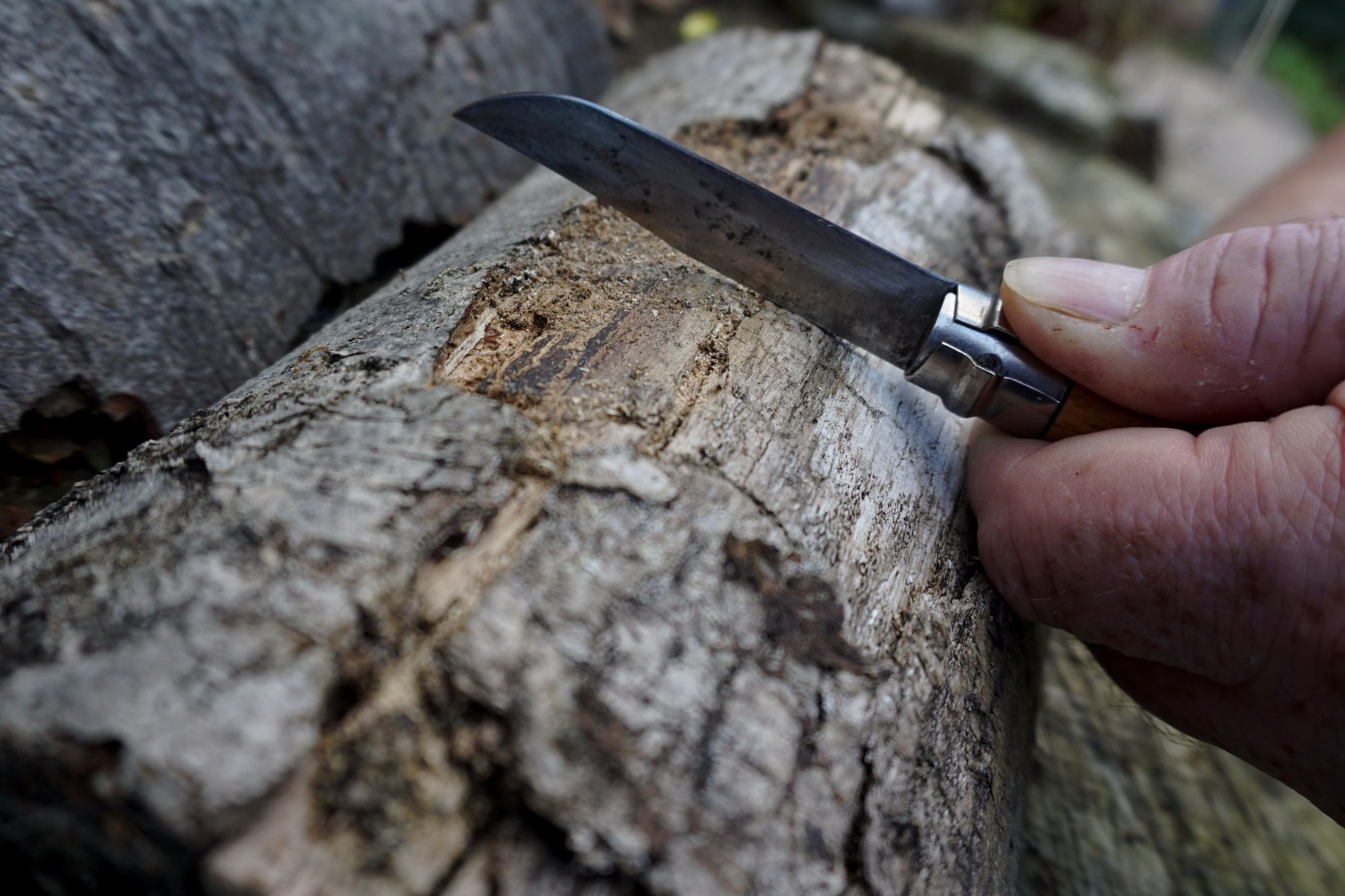 Stabilizing the Blade