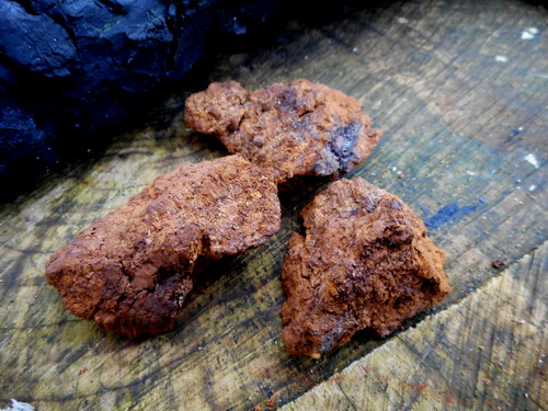 10g Bag of Chaga