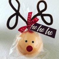 Bathbomb Reindeer