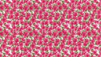 Pink and Olive Floral Fabric 100% Cotton Poplin