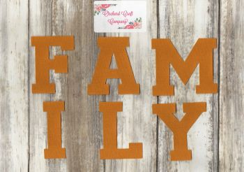 Iron On Fabric Uppercase Letters 'FAMILY' (No Sew) Sports Font