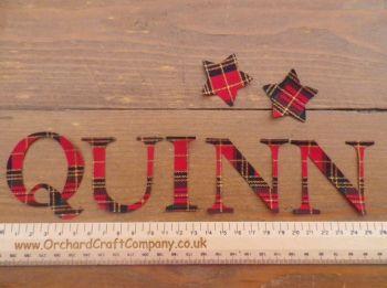 Fabric 5cm Christmas Letters. (No Sew) Sassy Serif Font