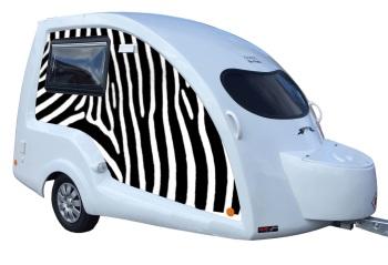 Side Panel zebra