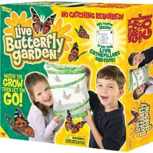 Butterfly Garden by Insect Lore - Award Winning Live Butterfly Hatching Kit