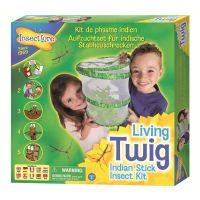 Living Twig Stick Insect Hatching Kit
