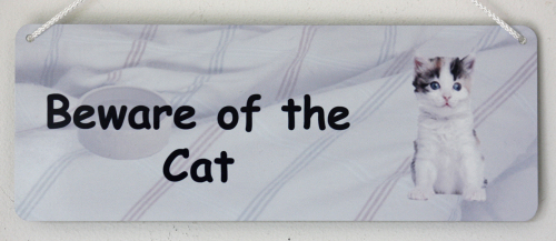 Beware of the Cat - Tabby & White