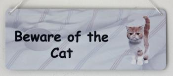 Beware of the Cat - Ginger & White