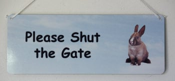 Please Shut the Gate - Rabbit