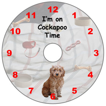 Cockapoo (Red)