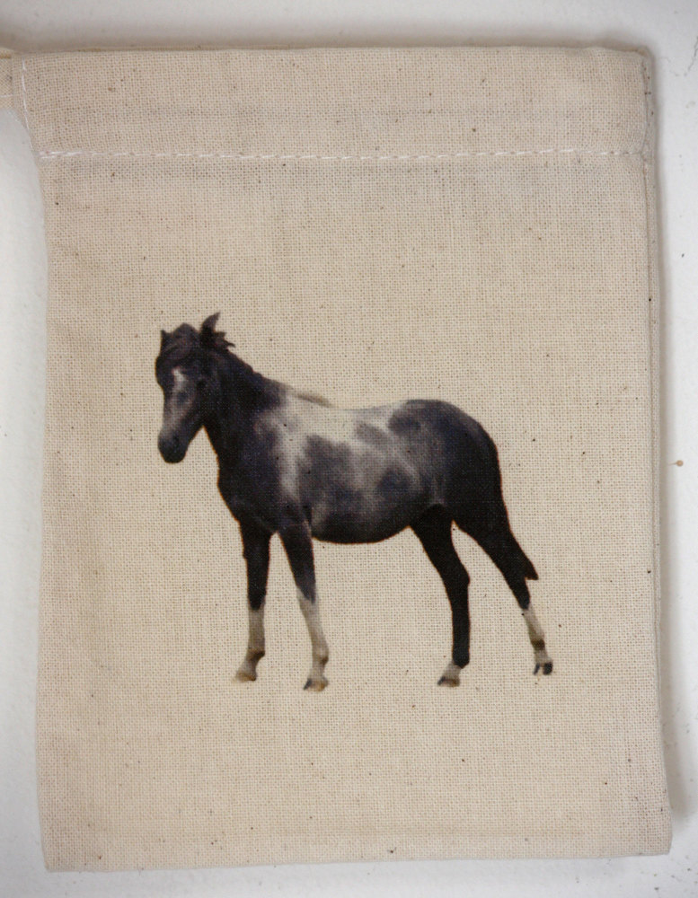 New Forest Pony (2)