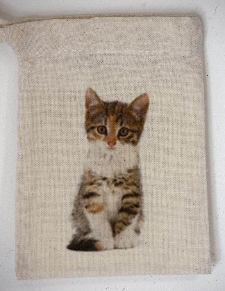 Kitten (5)