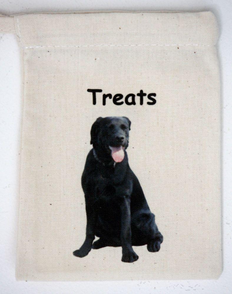 Labrador (Black)