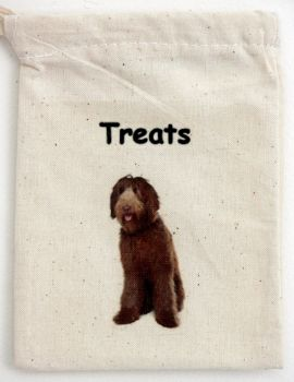 Labradoodle (Chocolate) 2