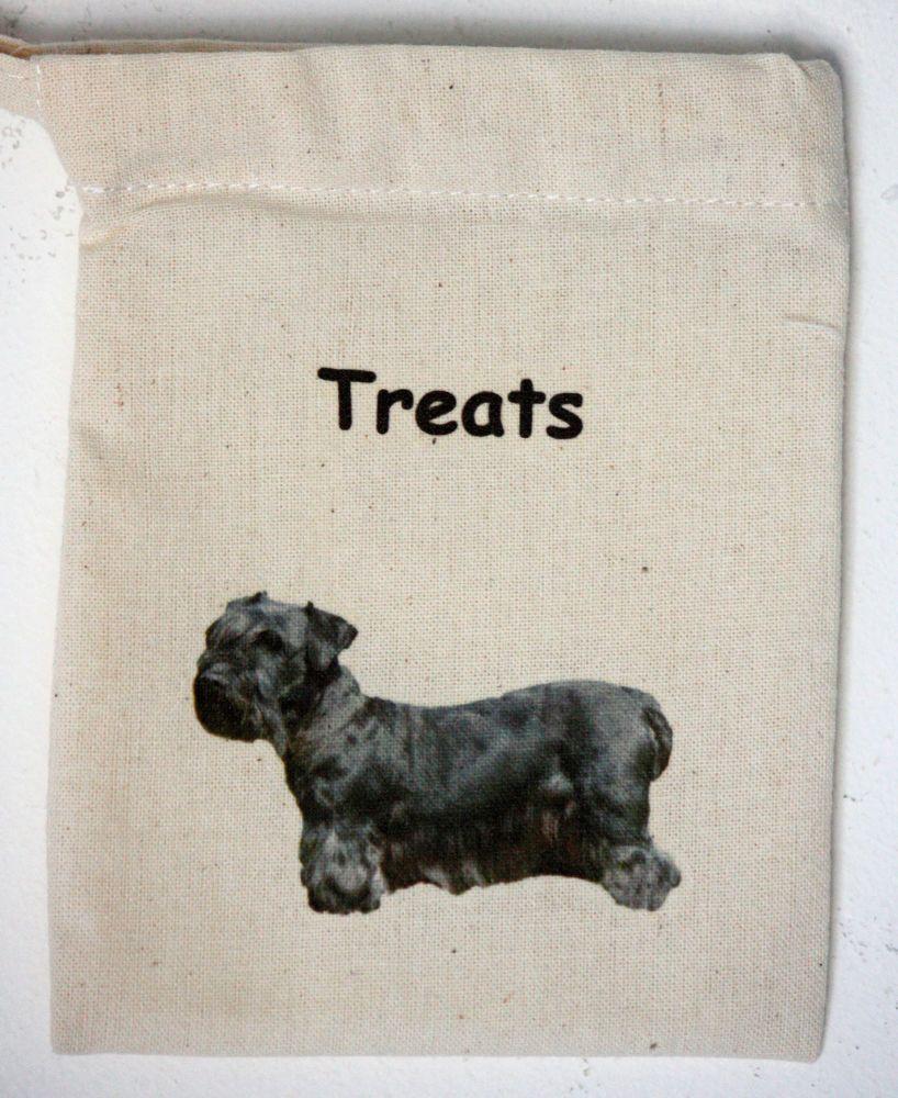 Cesky Terrier (2)