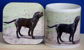 Black Labrador - Mug & Coaster (2)