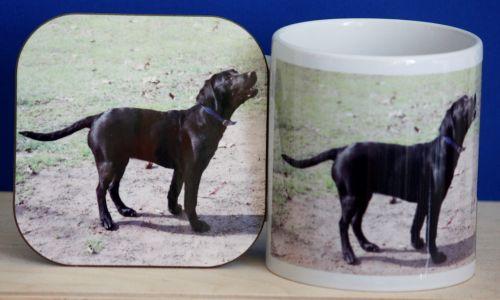 Blacl Labrador - Mug & Coaster