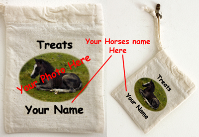 Horse Treats - Personalised