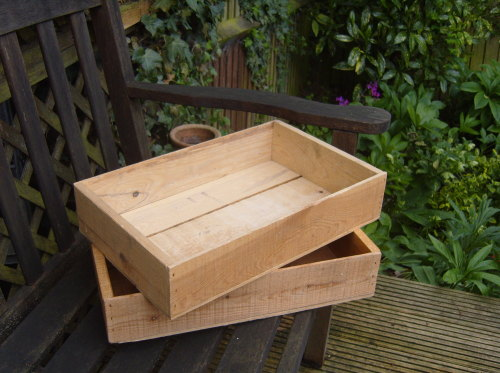 Large seed tray