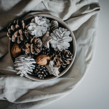 Decorative Scented Fir Cones