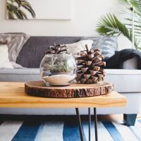 Vase and Fir Cone Display