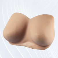 APOF Practice Bust (without Nipples)