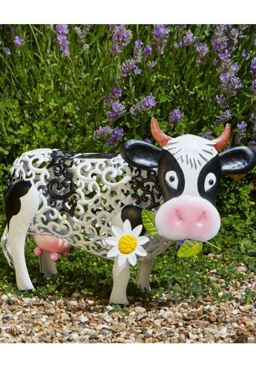 SOLAR DAISY COW