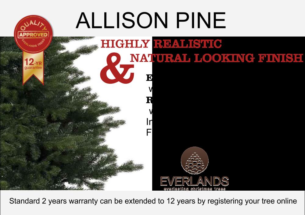 ALLISON_PINE_DISCRIPTION
