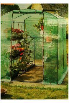 Greenhouse GroZone Max