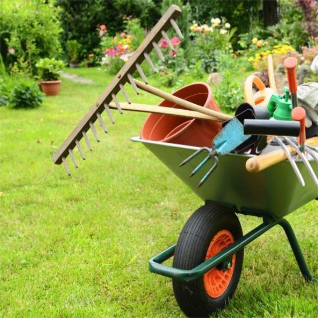 ALL YOU NEED FOR YOUR GARDEN