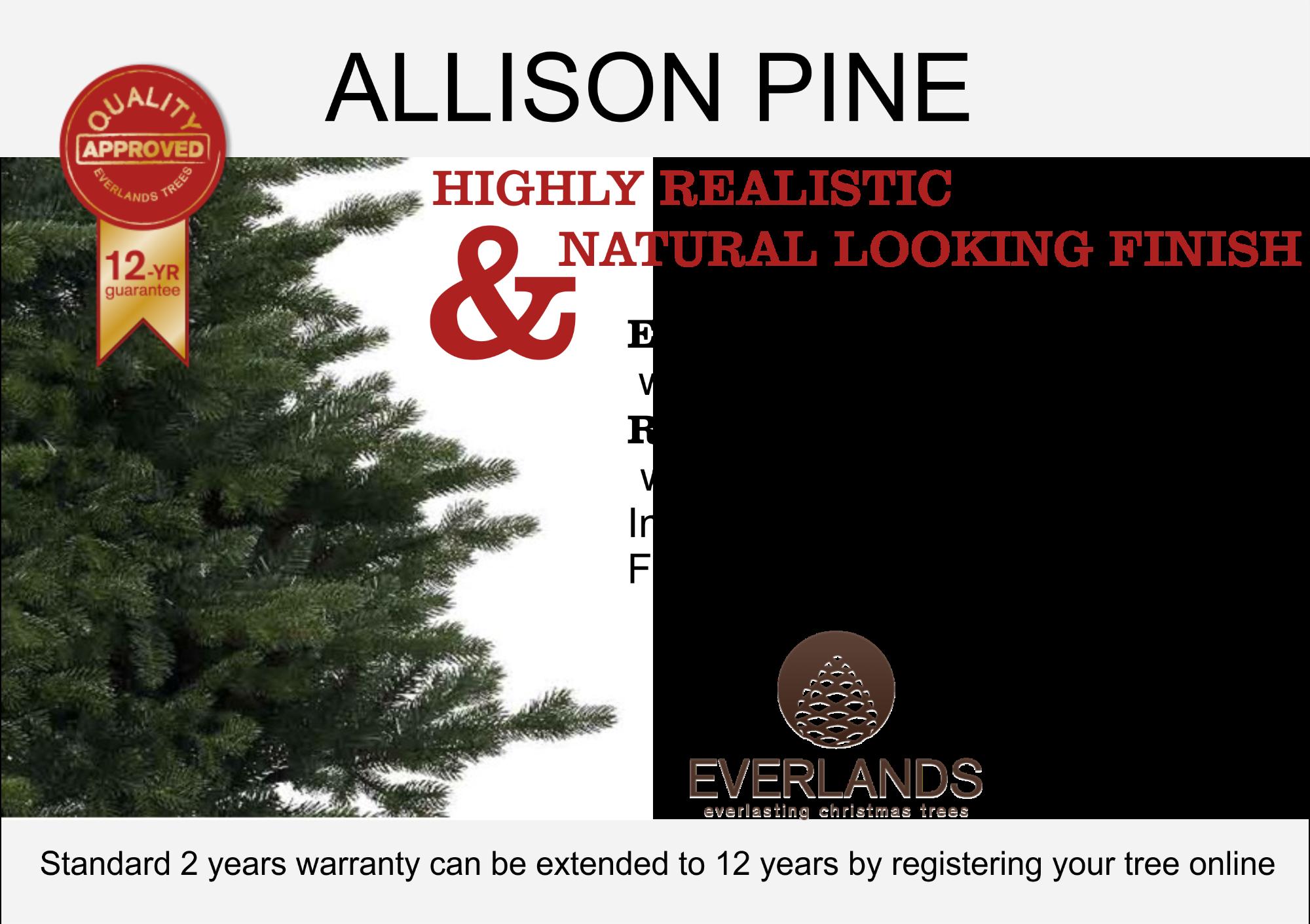 ALLISON_PINE_DISCRIPTION.png