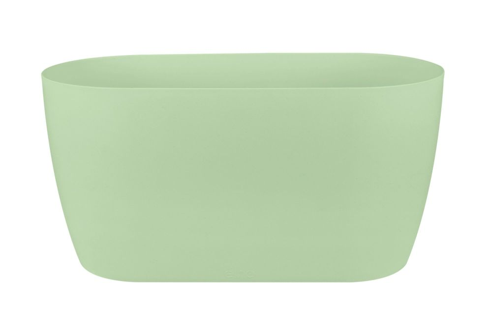 BRUSSELS  ORCHID DUO 25  soft green