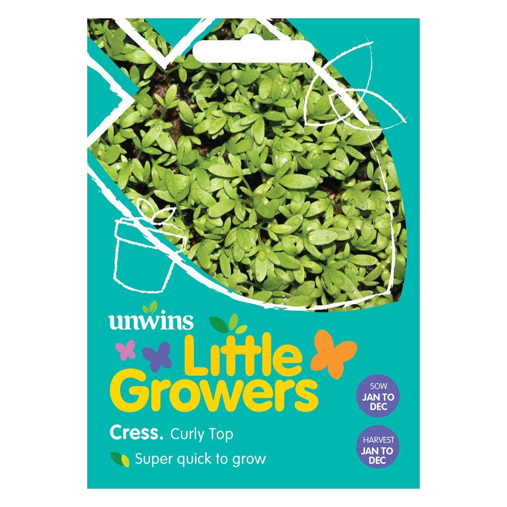 Little Growers Cress Curly Top
