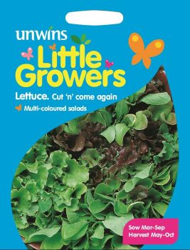 Little Growers Lettuce Cut n' come again